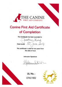 Canine 1st Aid Certificate